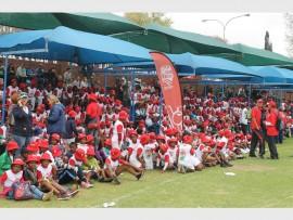 Over 1 100 kids from around Gauteng took part in the KFC Mini Cricket Festival at St David's Marist Inanda.