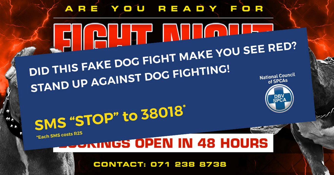 UPDATE: NSPCA responsible for dog fighting advert