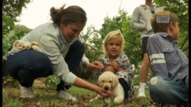 #InFocus – Guide-Dog Puppy handover