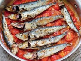 tomatoe and sardine