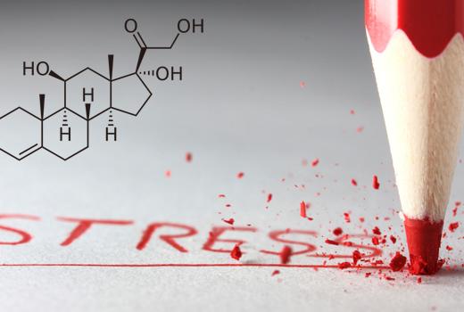 cortisol-the-stress-hormone