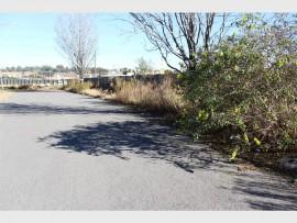 LONG GRASS: The cul-de-sac in Stefanus Street, Ridgeway, is totally overgrown.