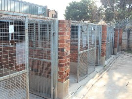 OLD: The kennels before they were renovated.