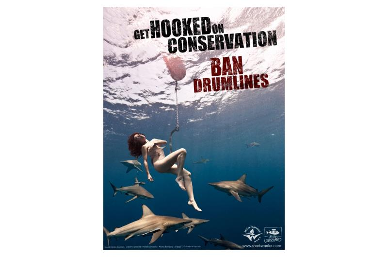Uncaged: Shark Vs. Ronda Rousey - Bell Media