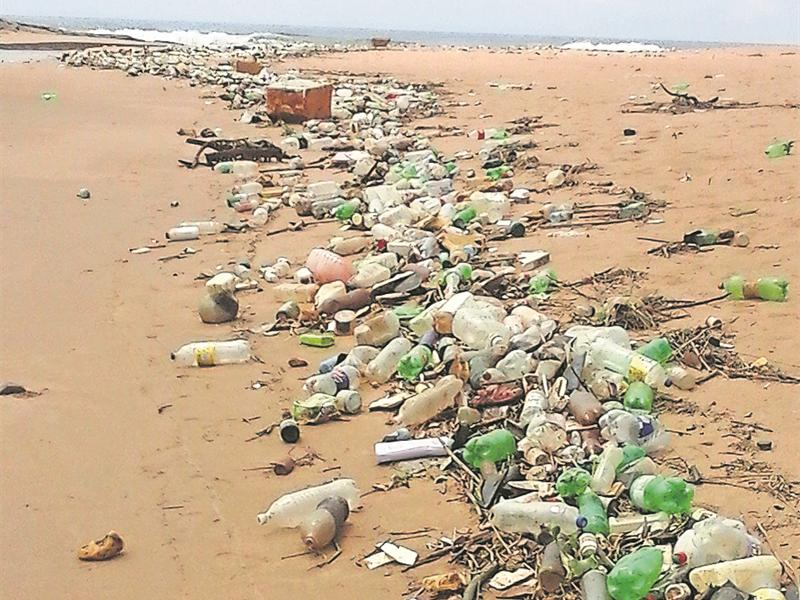 beach litter Long before beachgoers put up the first umbrella -- even before the first laughing gull is awake – municipal workers clean up the previous day's litter on miles of sand.