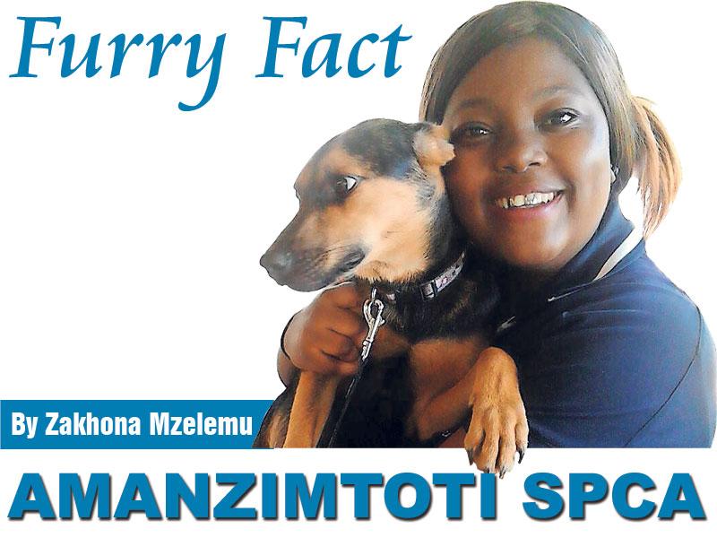 Furry-Fact