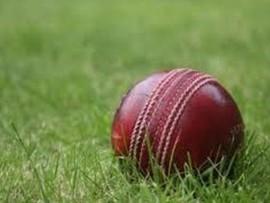 cricket_24813