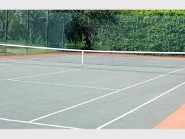 Tennis(1)_84042