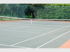 Tennis(1)_30142