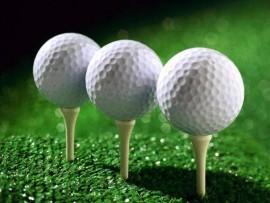golf1(2)_39676