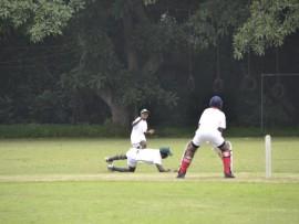 Toti Cricket (12)