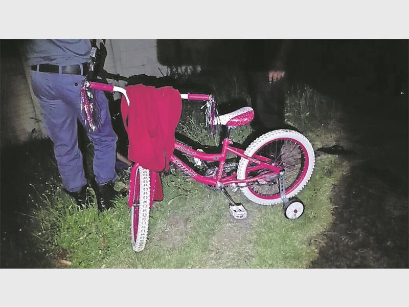 A pink girls bicycle and red tracksuit top were found in a property near Fynn Road.
