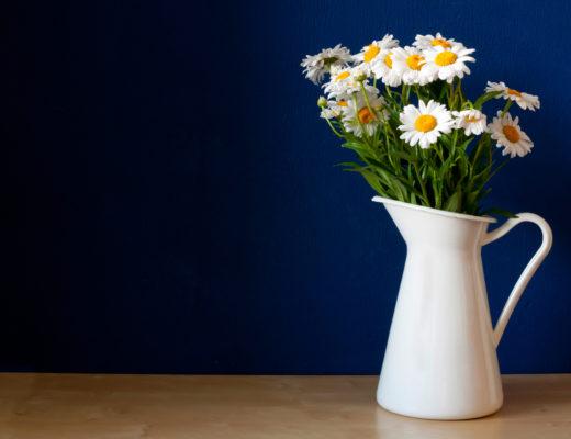 Tips To Make Cut Flowers Last Longer South Coast Sun