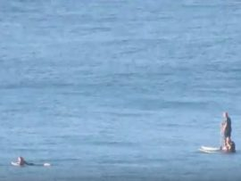 Dolphins surfing with Surfers off Amanzimtoti