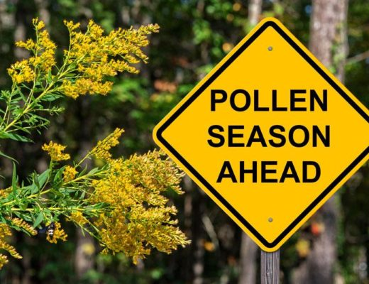 Practical ways to deal with pollen allergies   South Coast Sun