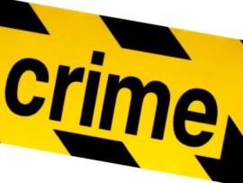 crime33 (Custom) (2)