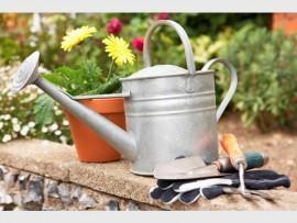 gardening_96034