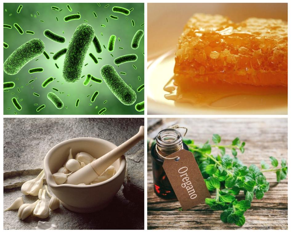Healthy Friday: 10 Natural antibiotics combating superbugs