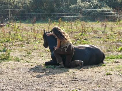 horse whisper (14)