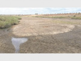 Photo of the Crocodile River taken this week. Photo: Sarah ZIpp