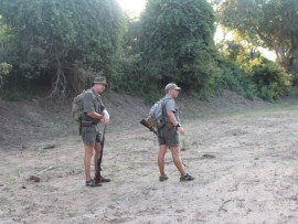 Jaco Buys (links) en Jannie Jurgens in die rivierloop naby Krokodilbrugkamp in die Nasionale Krugerwildtuin waar 'n kwaai olifantkoei op 'n groep afgestorm het.