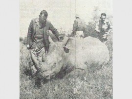 Mr Ossie Doyer and one of his rhinos. Insert: Headlines in The Lowvelder of nearly 50 years ago.