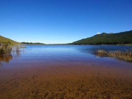 Theewaterskloof_between_Grabouw_and_Villiersdorp_South_Africa