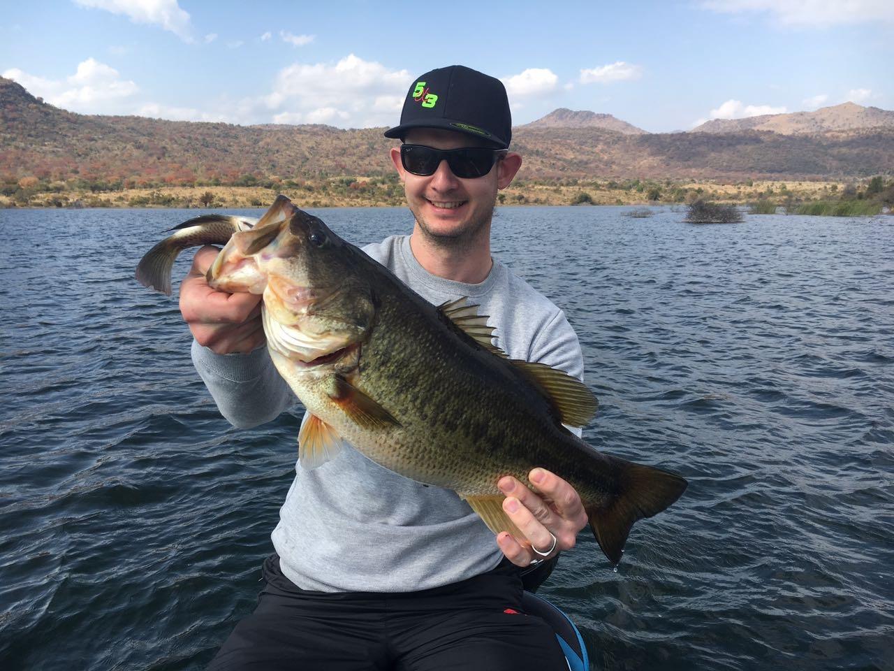 bass eats huge kurper