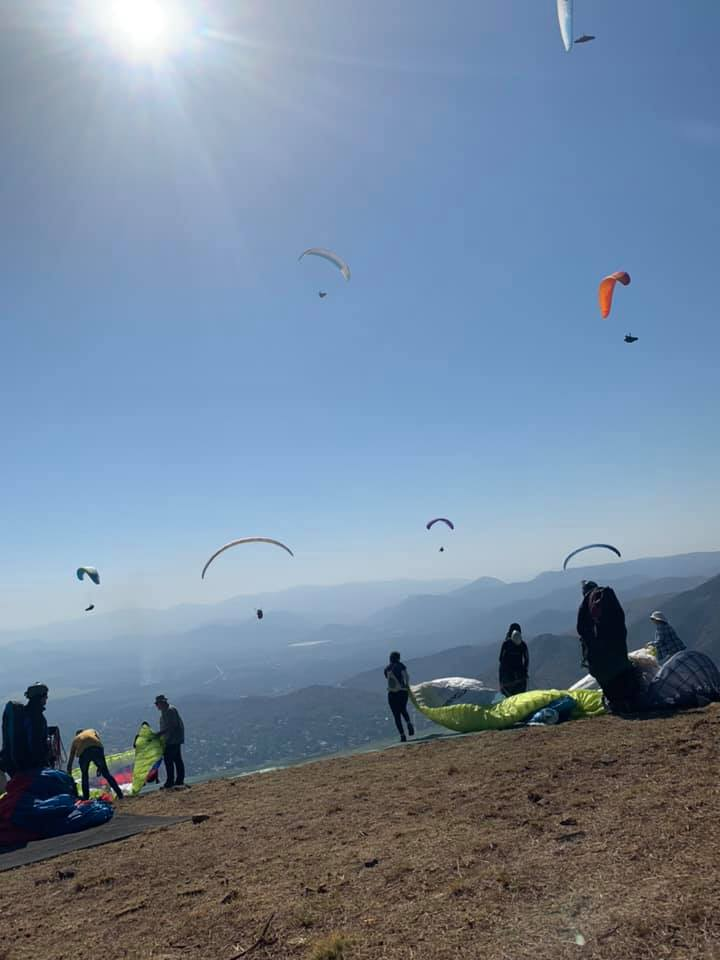 Paraglider's life cut tragically short in freak accident