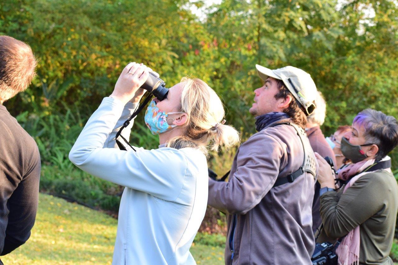 Spend the morning with an international bird guide - Lowvelder