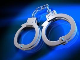 arrests1 (960 x 720)