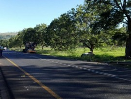 The festive season saw an increase in road fatalities