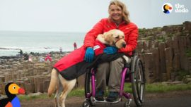 Service Dog Inspires Injured Woman To Live Life To The Fullest