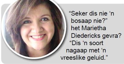 Marieta Diedericks