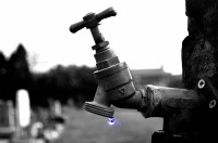 tap-84487