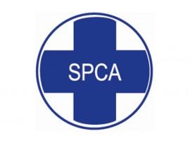spca-logo_80107