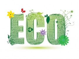 eco4_15129