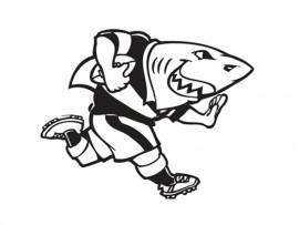 Sharks-logo_57416
