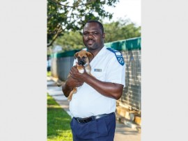Inspector Sydney Nkomo with one of the puppies in the kennels at Durban and Coast SPCA.