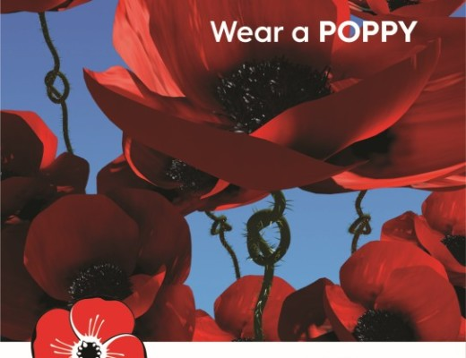 Why we wear a poppy on Remembrance Day | Berea Mail