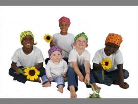 sunflower-fun_547047607