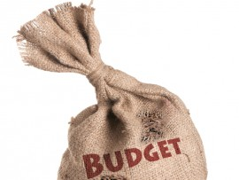 durban budget