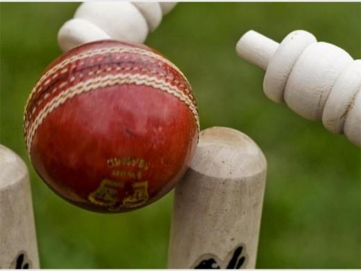 Cricket2_73678