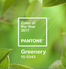 pantone1