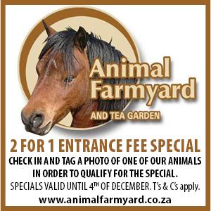 Animal farmyard2