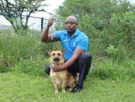 Zozo Kayumba of the Durban & Coast SPCA strongly condemns the chaining of animals. He is with two-year-old German Shepherd cross, Junior, that is available for adoption.