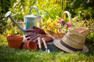 Gardening Resolutions