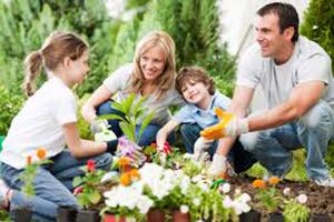 Gardening Pic 2