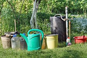 Water wise gardening