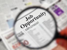 job-alert-scam-1
